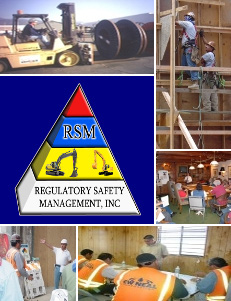 REGULATORY SAFETY MANAGEMENT, INC.